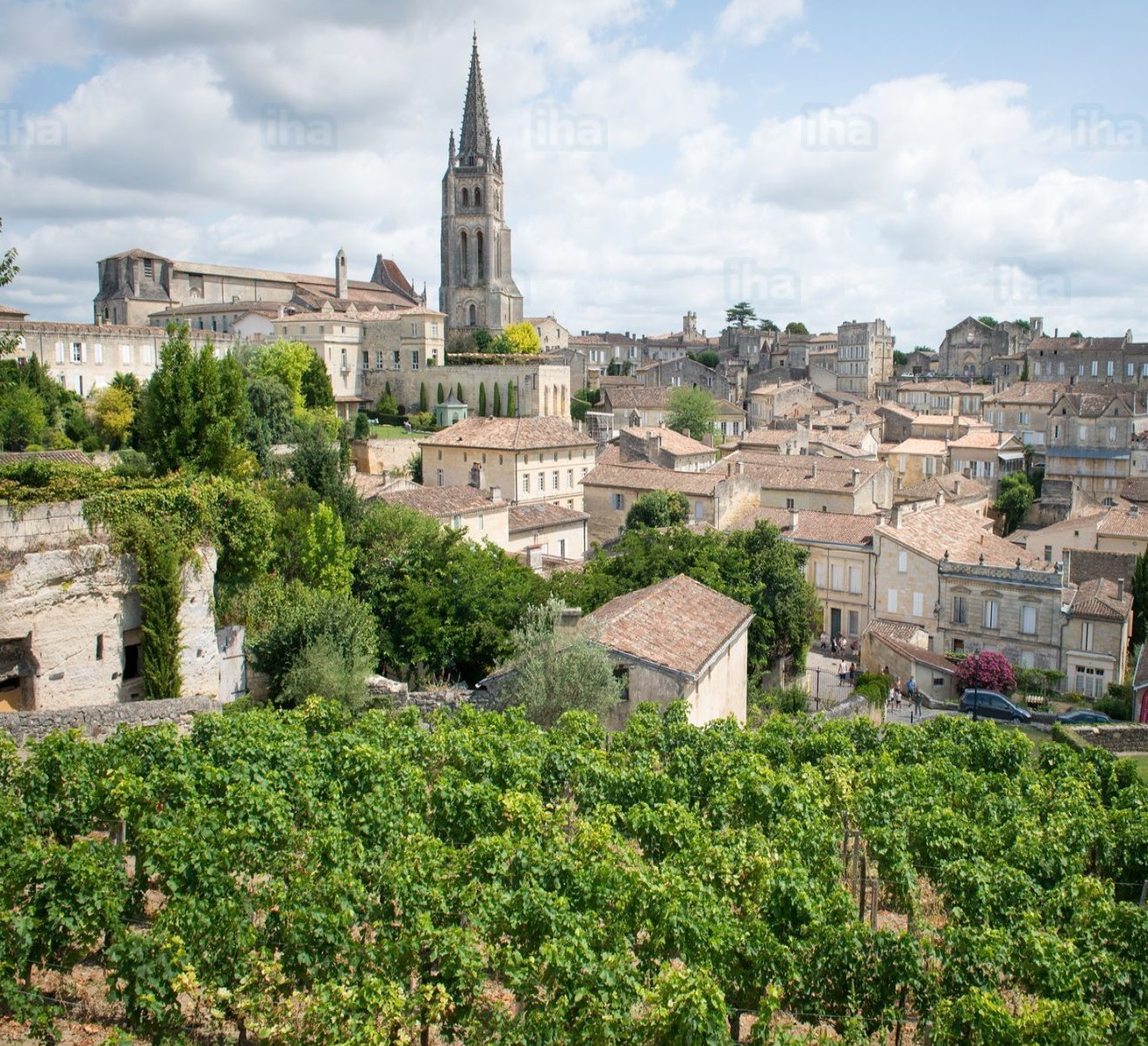 LE TAILLAN MEDOC